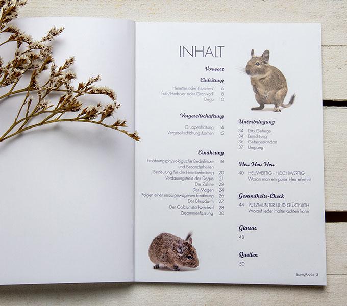 bunnyBooks Degu Details