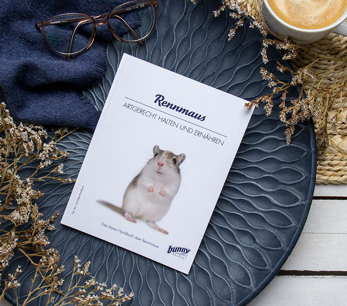 bunnyBook Rennmaus Cover