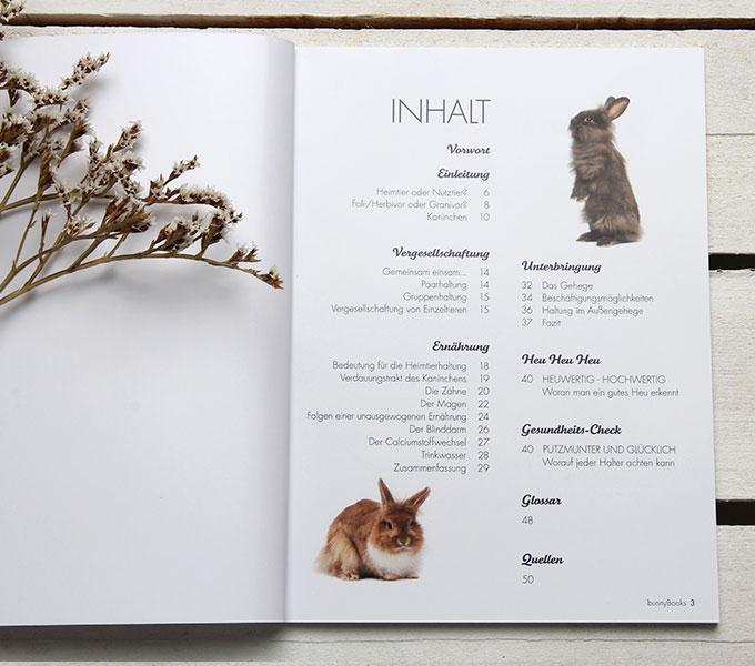 bunnyBooks Kaninchen Details