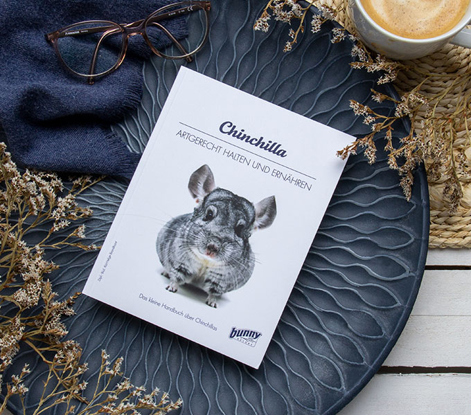 bunnyBooks Chinchilla Cover