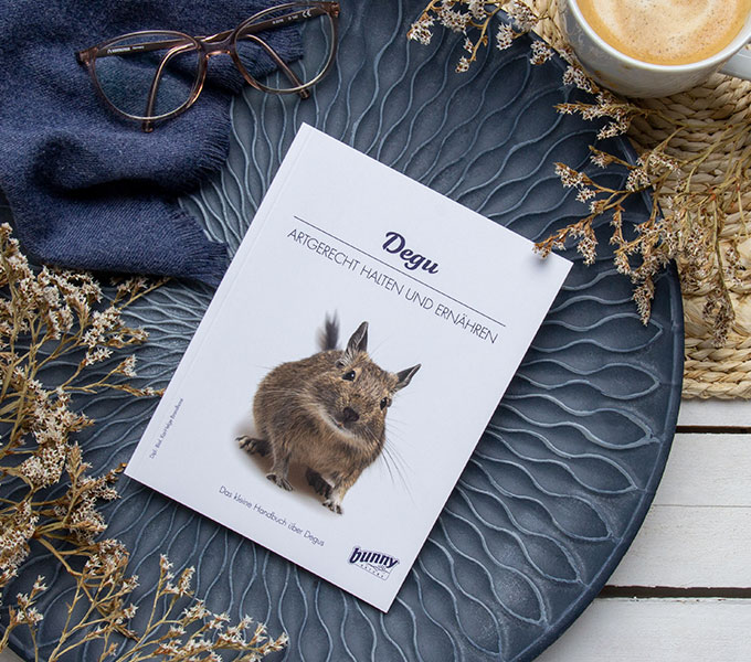 bunnyBooks Degu Cover