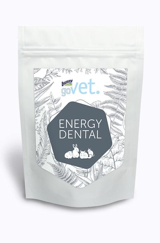 goVet Energ Dental Packung