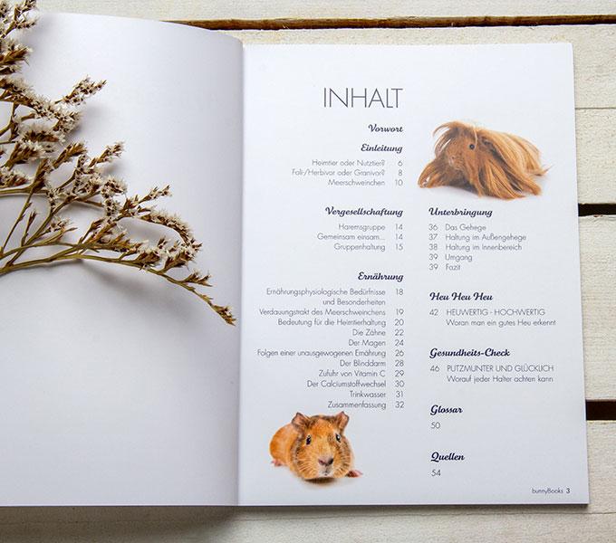 bunnyBooks Meerschweinchen  Details