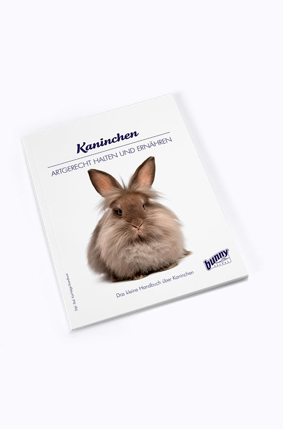 bunnyBooks Kaninchen Produkt