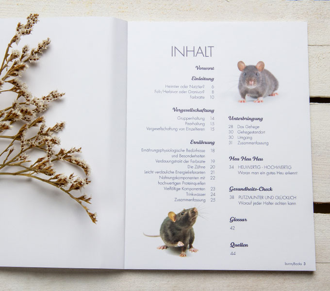 bunnyBook Ratte Details